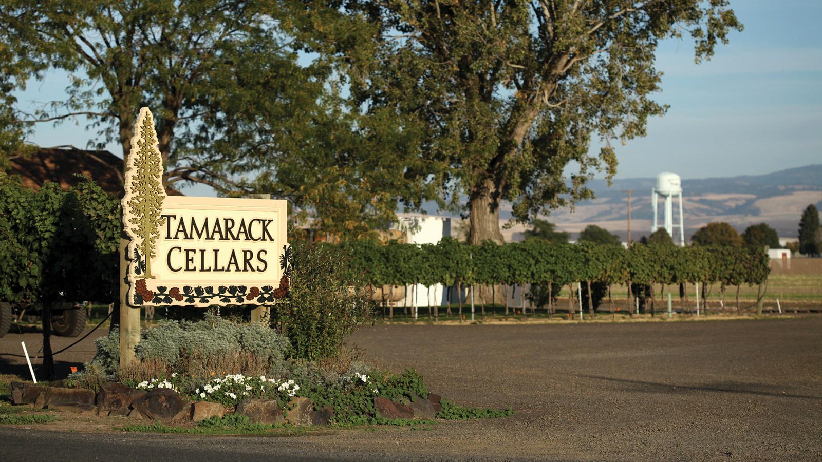 California?s Vintage Wine Estates Buys Historic Washington Winery Tamarack Cellars photo