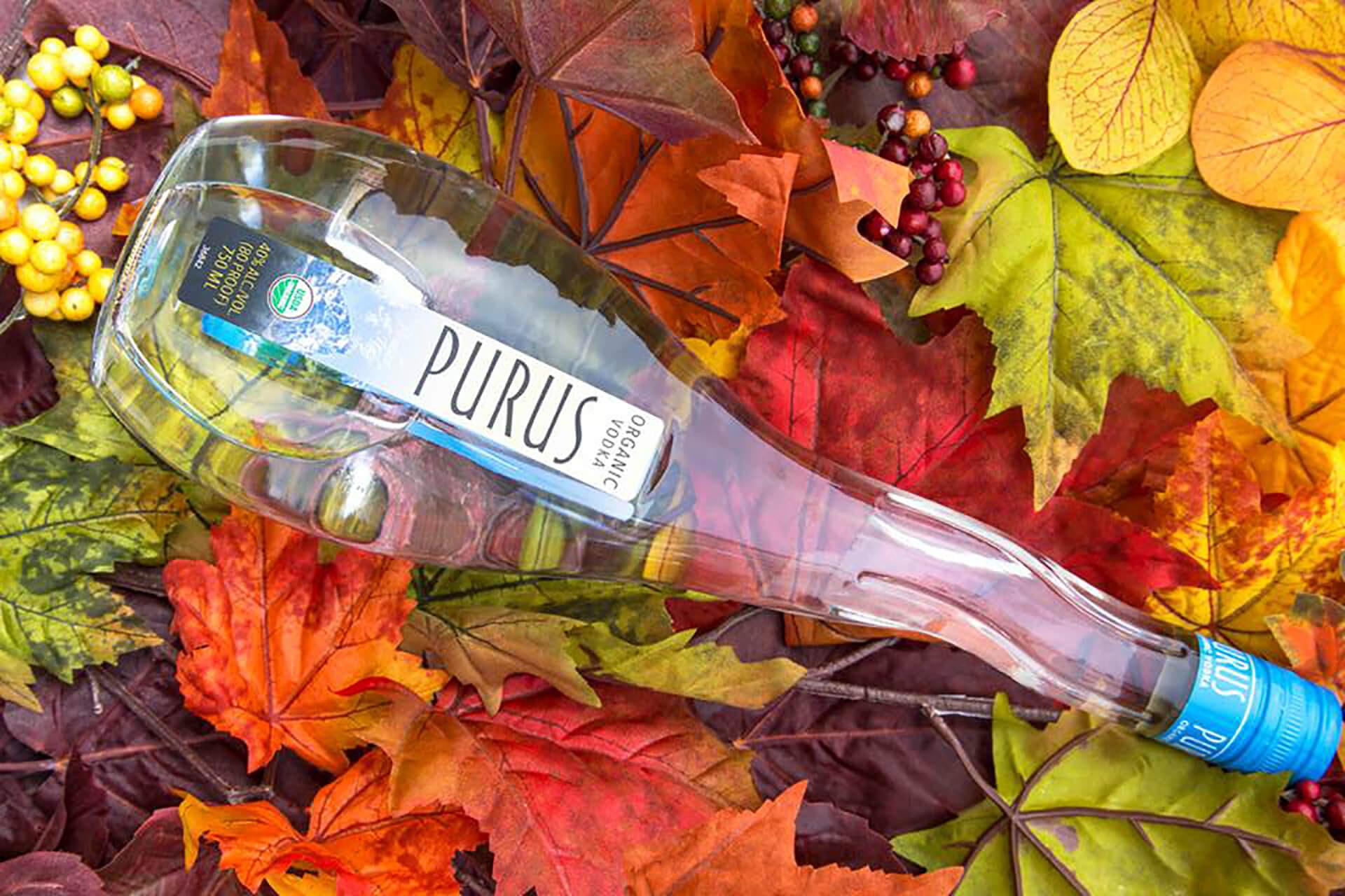 Discover Vodka's Hidden Diversity photo