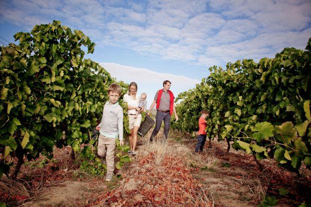 Continuum Of Good Wine And Heritage photo