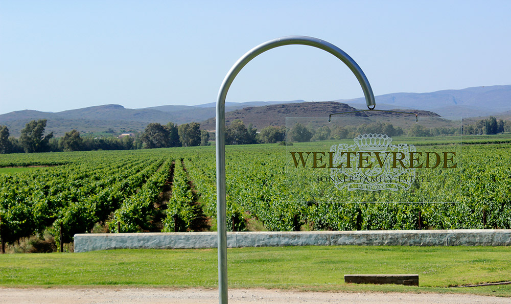 One Night In Weltevrede, The Experience Of A Lifetime photo