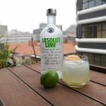 Absolut Lime Time Cocktail Recipe photo