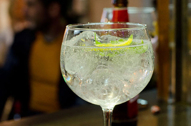 How To Taste Gin Like A Professional photo