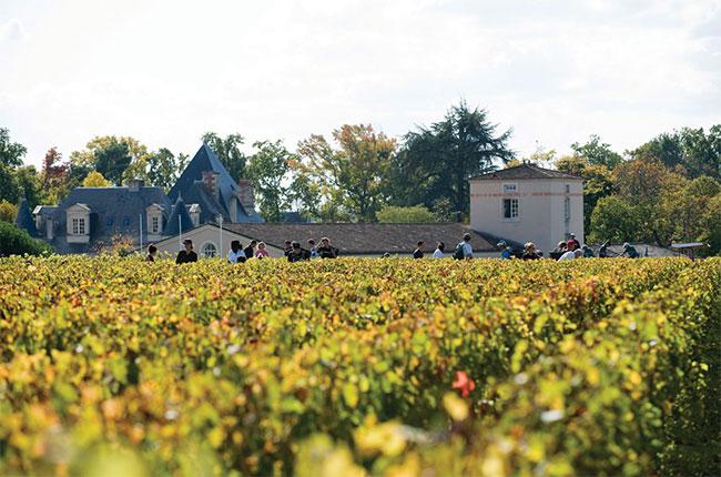 Anson: The Women Who Shaped Bordeaux photo