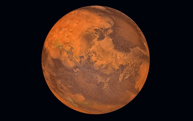 Students Discover How To Grow Hops On Mars photo