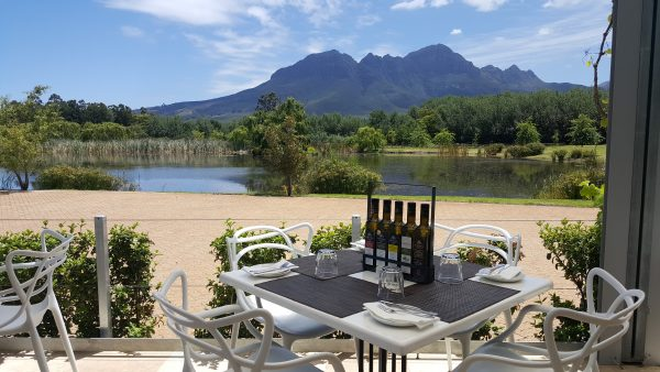 morgester wine estate e1515487051998 Unusual South African Wines You Should Be Drinking in 2018