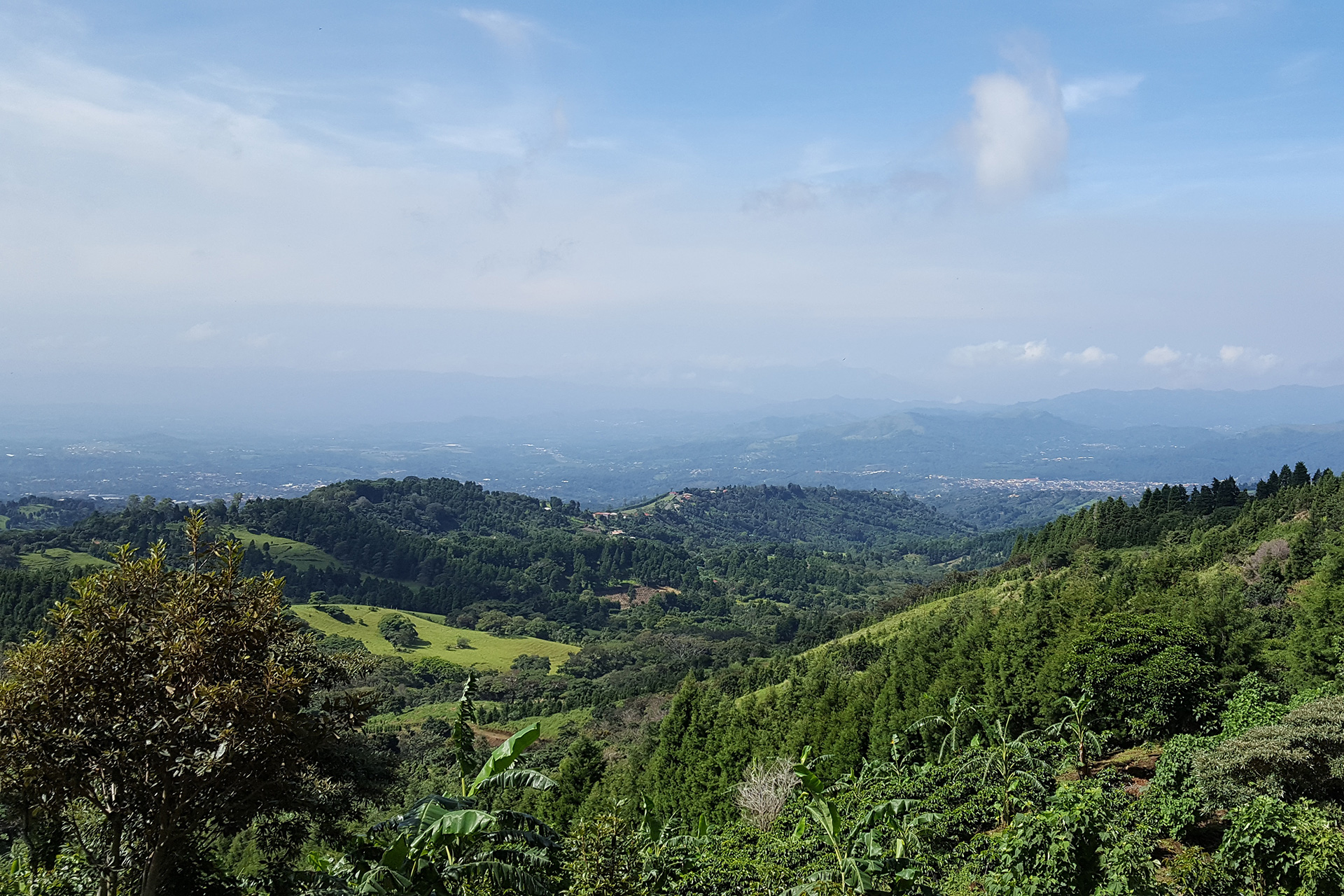 Kickstart Your Weekend: Help Fund A Coffee Mill In Costa Rica photo