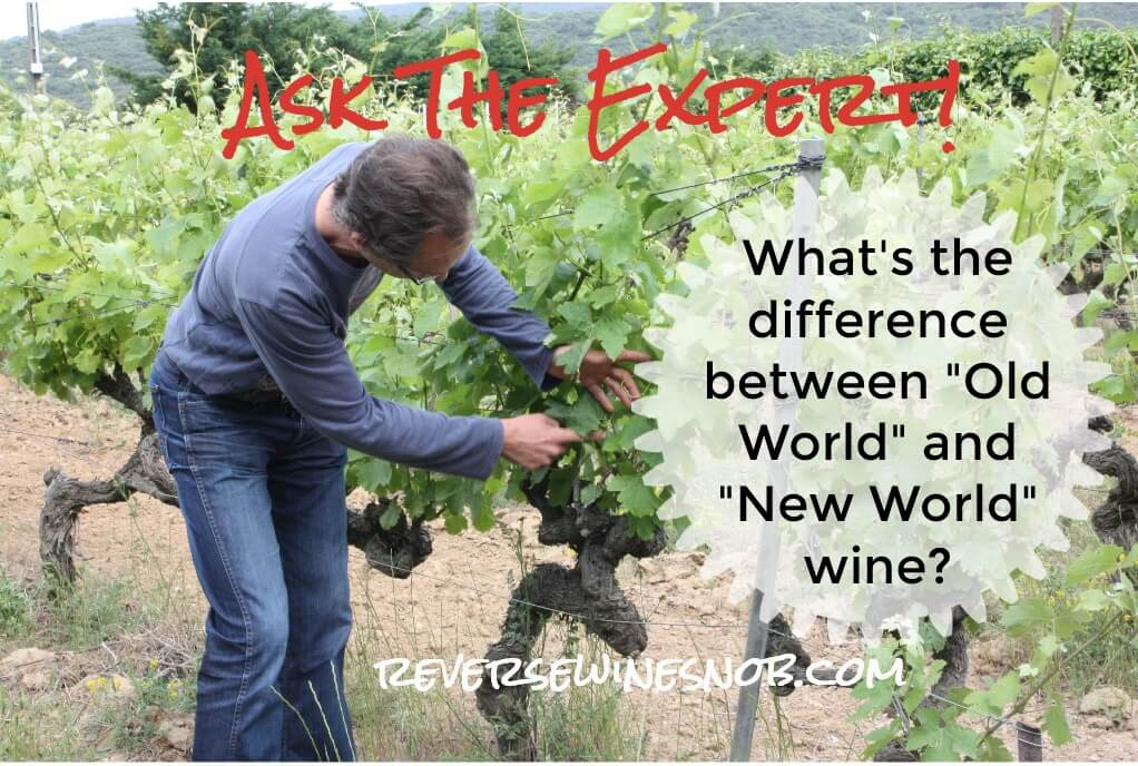 What's The Difference Between Old World Wines And New World Wines? photo