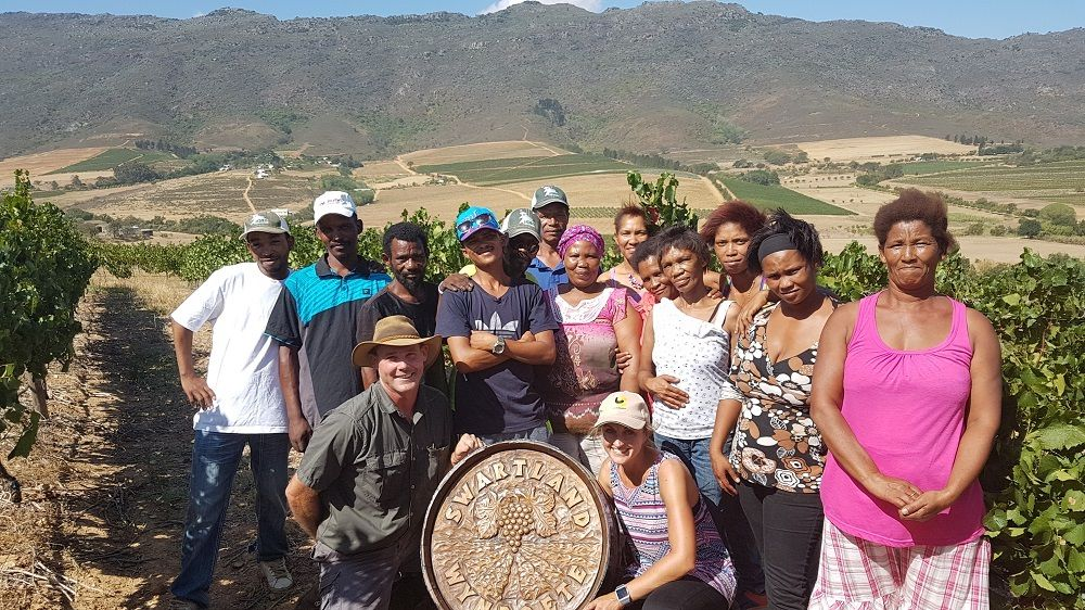 Good Practices Clinch Best Chardonnay Block For Riebeek Cellars Wine Producer photo