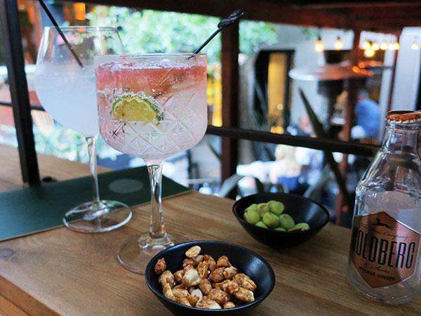 A Hidden Gin Bar And Succulent Steak: We Review Southern Suburbs Gem, Patina photo
