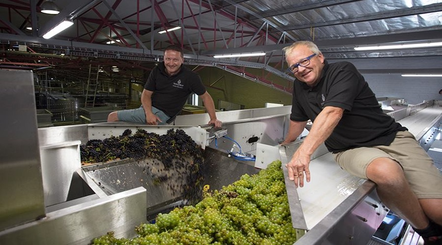 All systems go for Harvest 2018 at Graham Beck photo