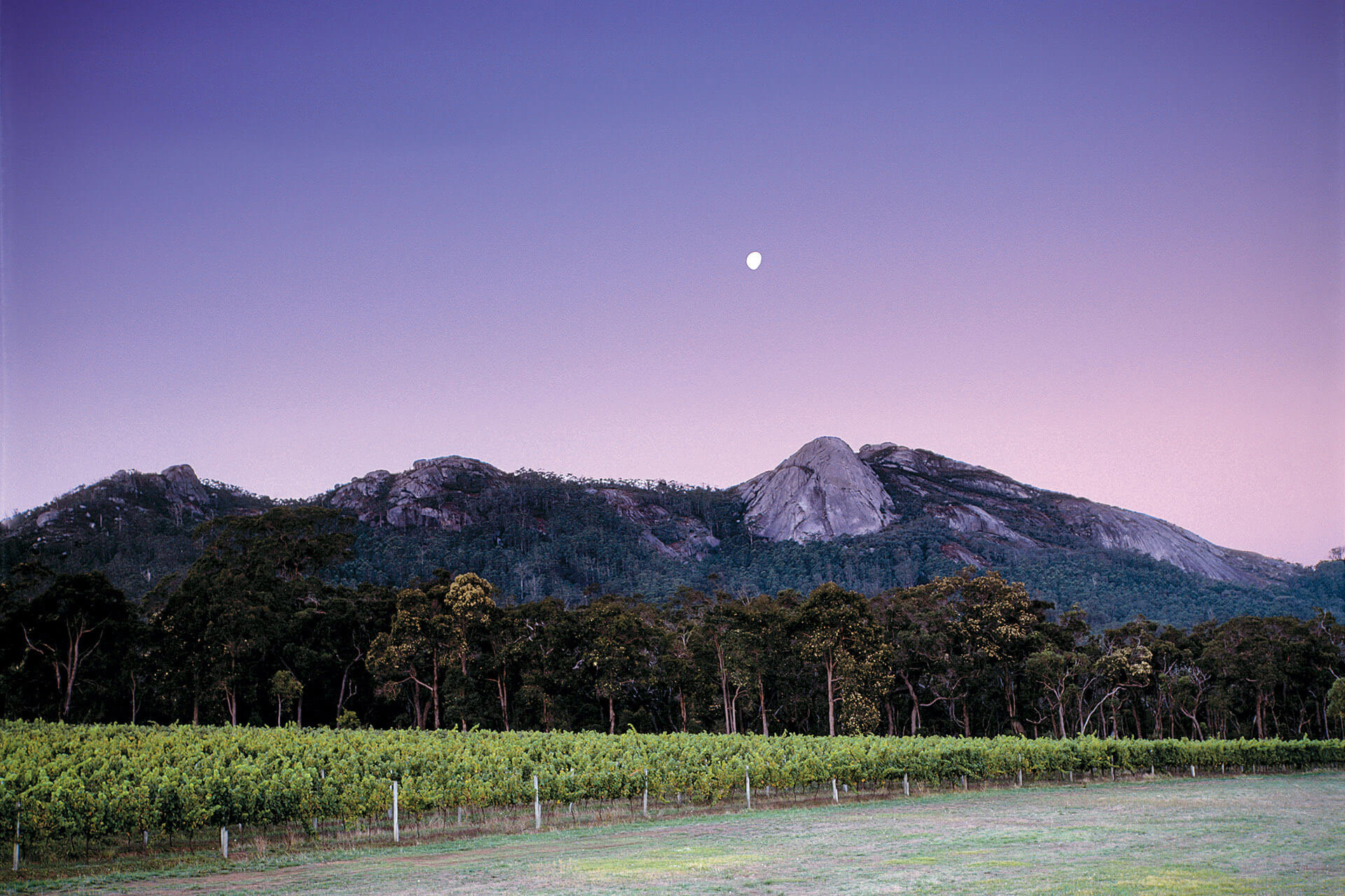 Why You Should Know Great Southern, Australia's Unsung Wine Region photo