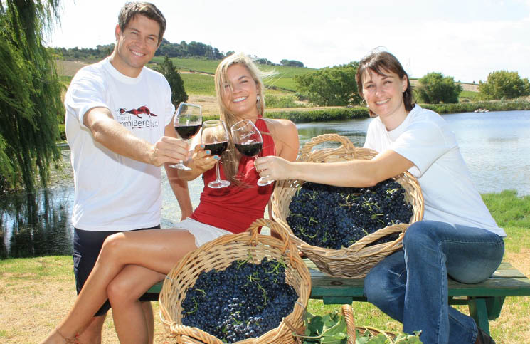 Celebrate Harvest Time At Ommiberg In Paarl photo