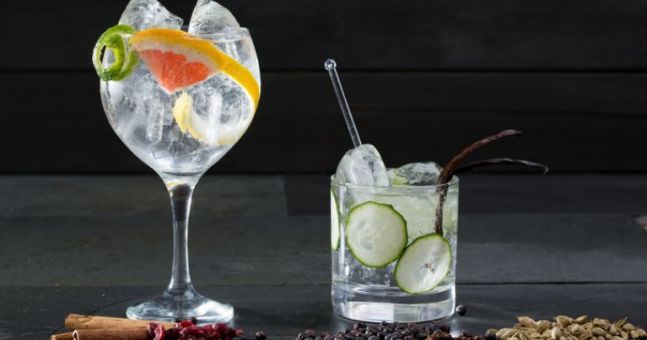 Forget Book Clubs! Ireland Is About To Get Its First Gin & Tonic Club photo