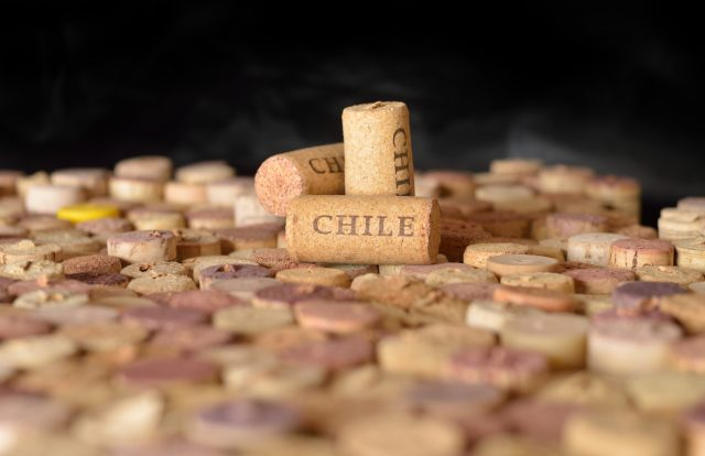 Chile To Overtake France, Italy And Spain As Uk?s Second Biggest Importer photo