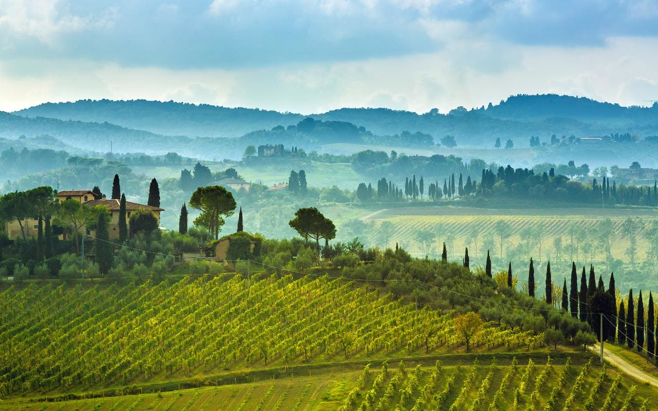 Why Wine Tourism Is Booming In 2018 – And The Best Destinations To Visit photo
