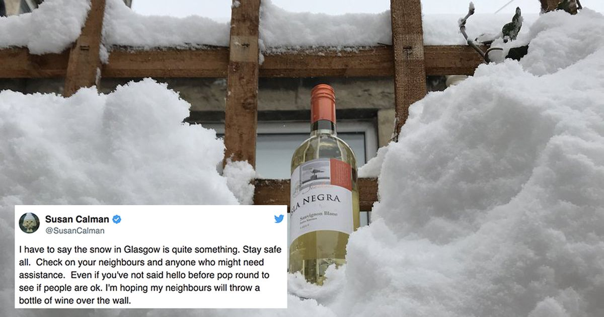 This Comedian's Neighbours Left Her Wine In The Snow To Help Beat Weather Blues photo