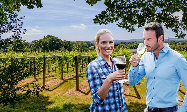 Matthew Jukes' Guide To The Best Of English Wine photo