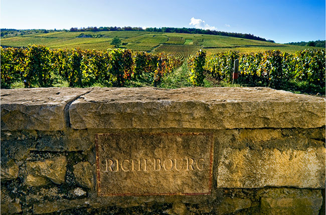 Domaine Jean Grivot: Profile And Wine Ratings photo