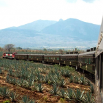 You Can Take a Tequila Train to Mexico's Most Magical Town photo