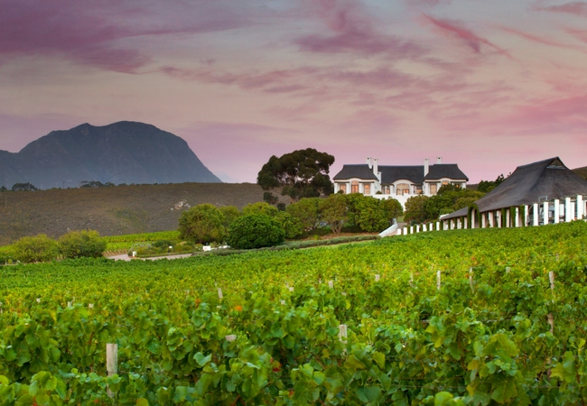 Partner Content: What Makes The Hemel-en-aarde Valley's Bouchard Finlayson Wines Exceptional photo