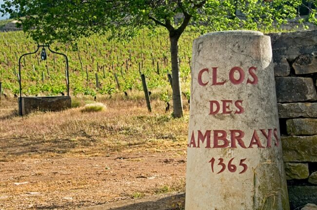 Comment: Burgundy Enters Era Of Billionaire Wine Owners photo