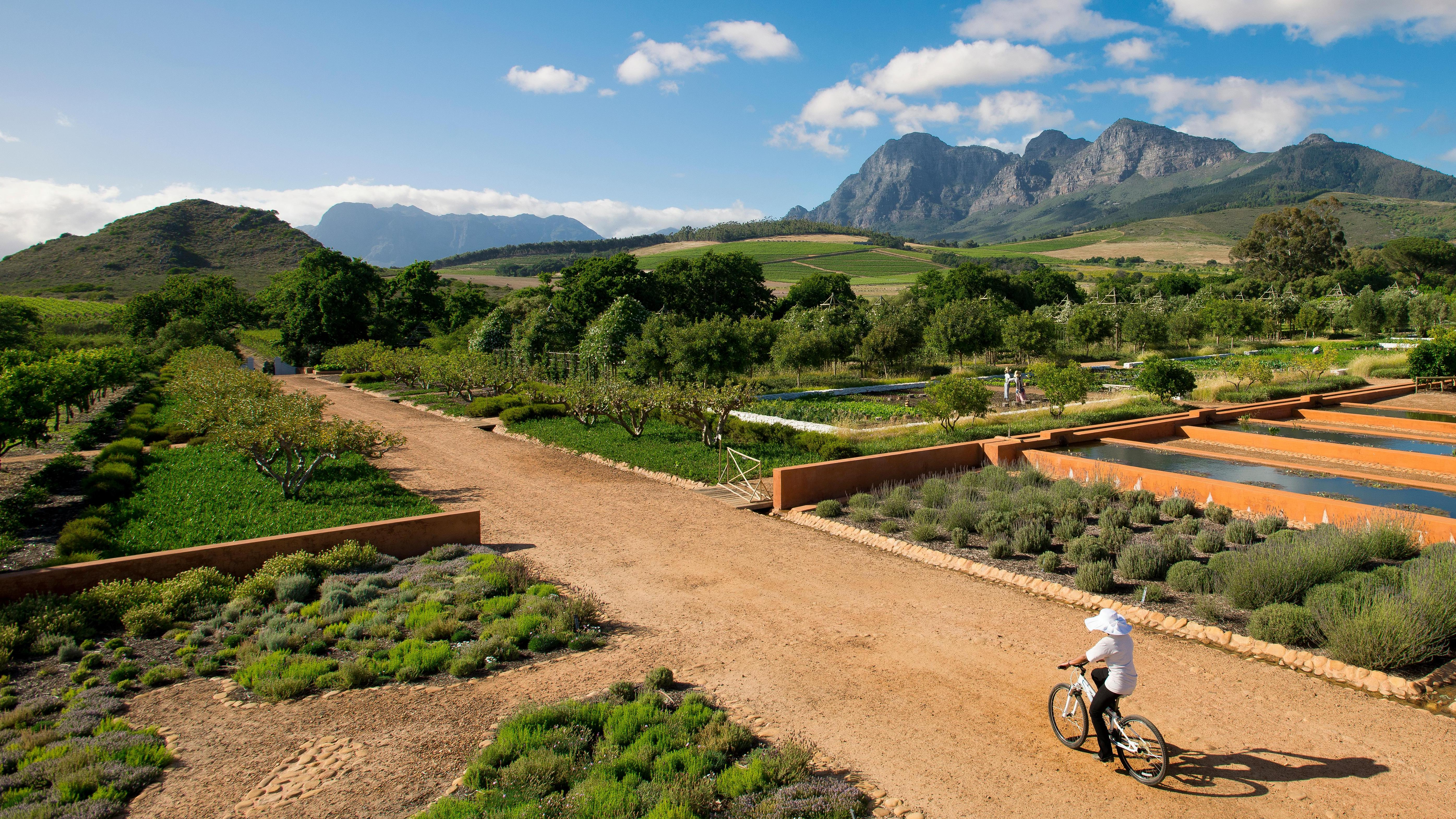 Welcome To The Cape's Exquisite Wineland Retreats photo