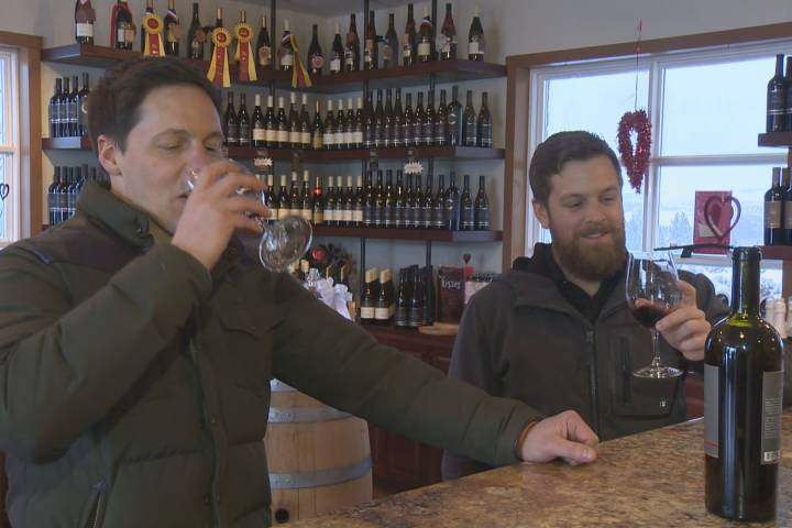 Tourism Minister Announces Boost For Okanagan?s Wine Industry In Wake Of Wine Dispute photo