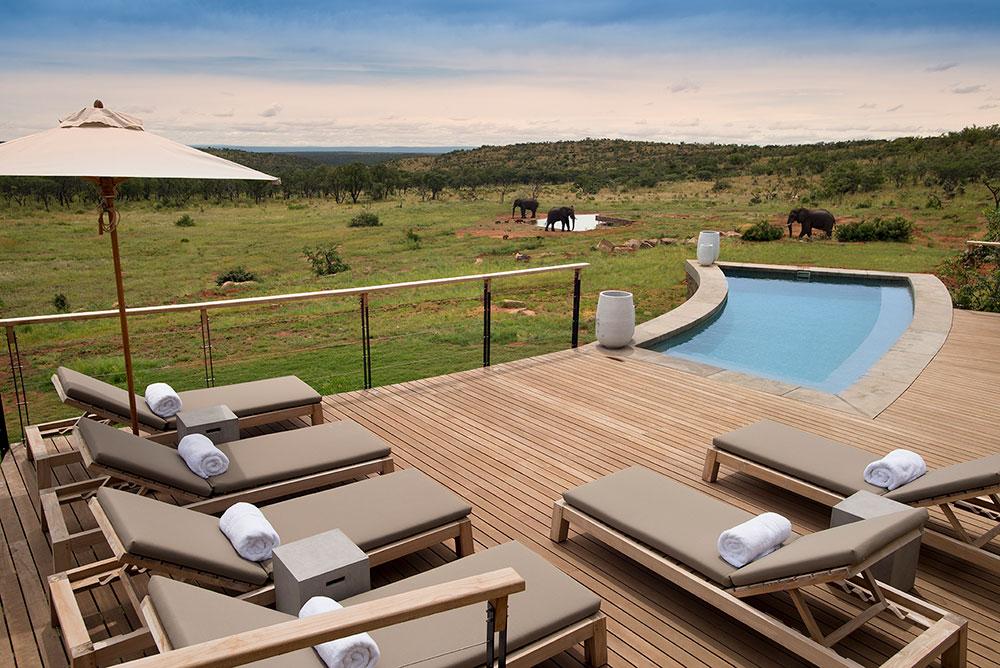 Moved, Heart And Soul, By Mhondoro Safari Lodge & Villa photo