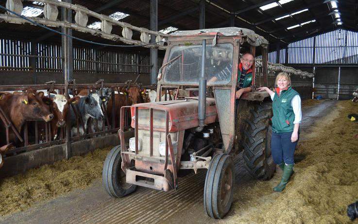 Secrets Of A Successful Dairy Herd photo