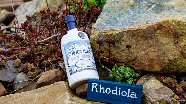 7 Things To Know About Rock Rose's Gin Revolution photo