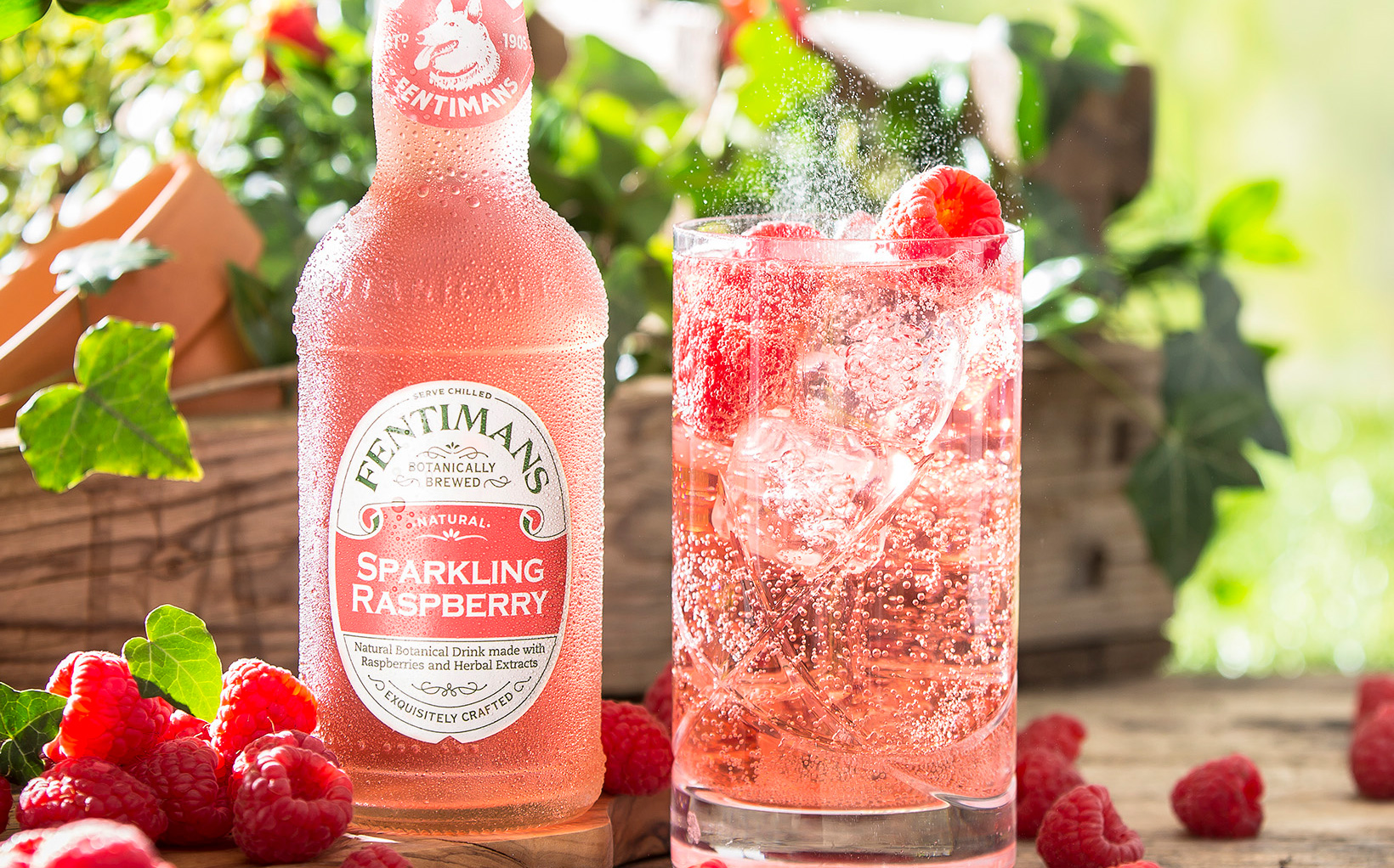 Fentimans Boosts Soft Drink Offer With Sparkling Raspberry Variant photo