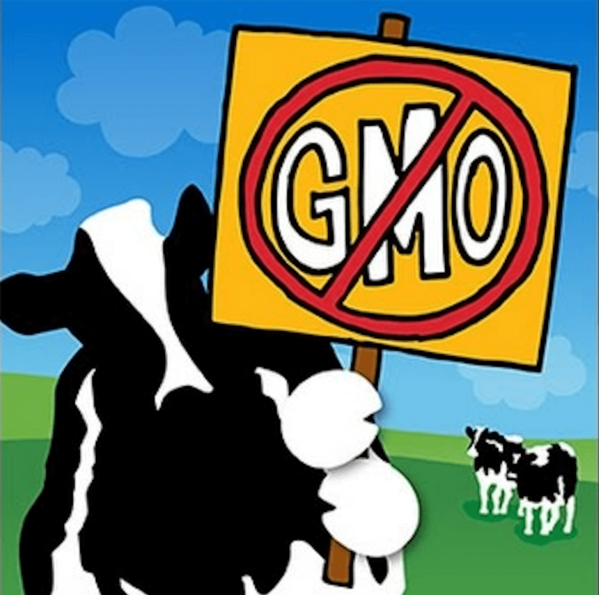 Viewpoint: How Dairy Companies Like Stonyfield Organic Mislead Consumers About Gmos photo