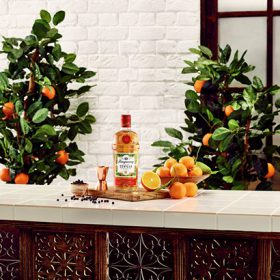 Tanqueray Flor De Sevilla Prepares To Launch photo