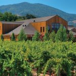 The Most Beautiful Biodynamic Wineries in the World photo