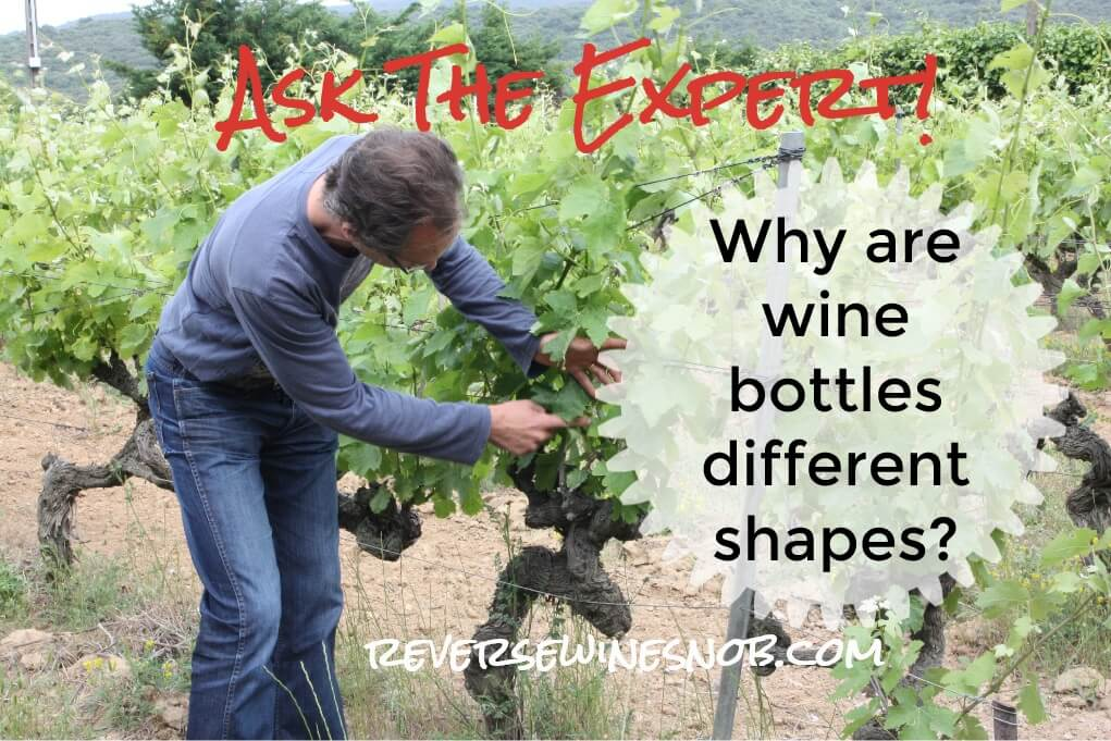 Why Are Wine Bottles Different Shapes? Ask The Expert! photo