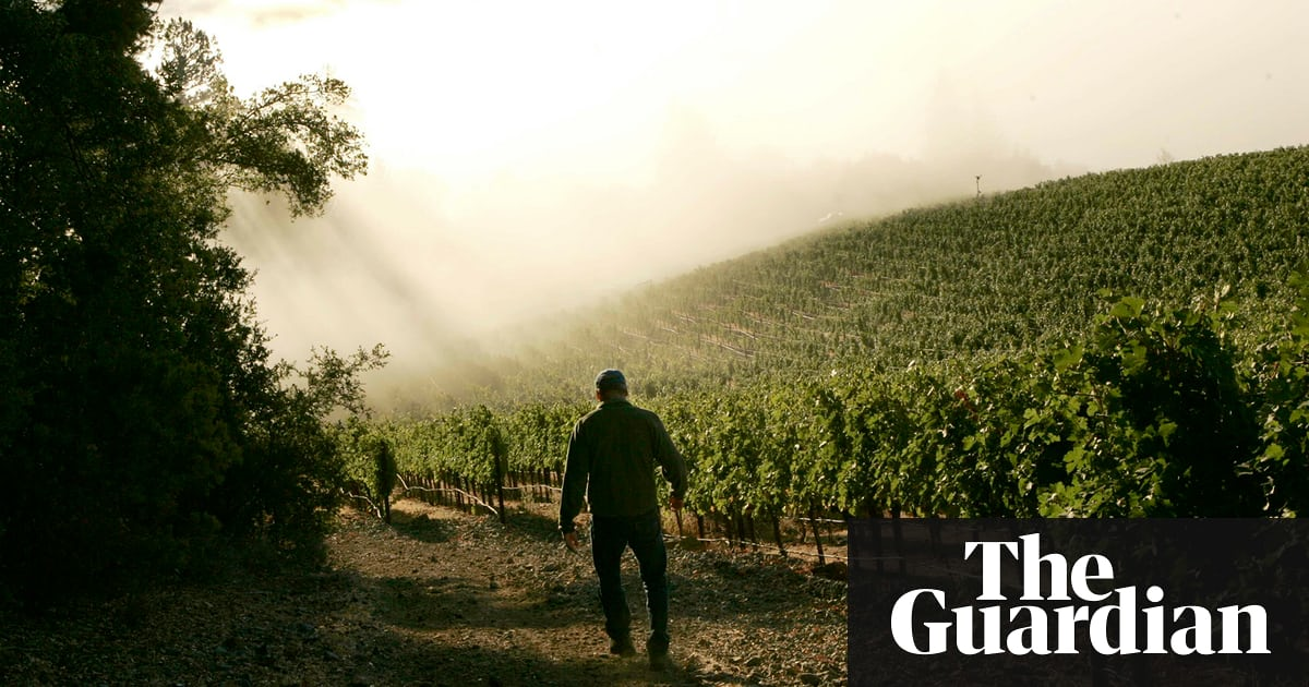Is Napa Growing Too Much Wine? Residents Seek To Preserve Treasured Land photo