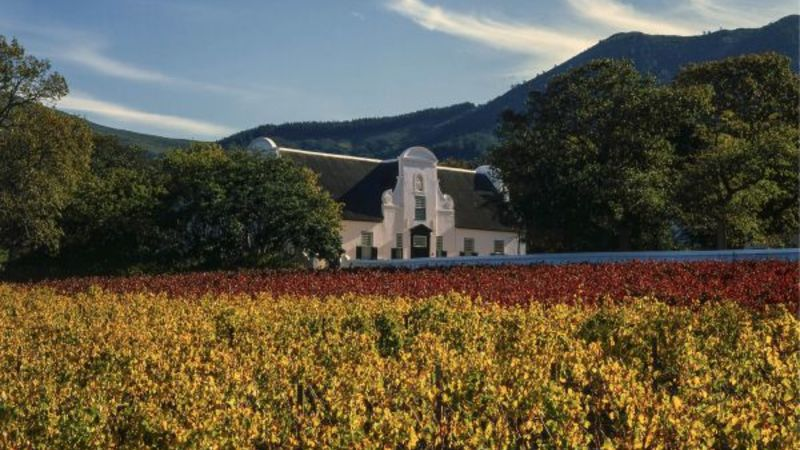 Right Of Reply: Groot Constantia's Response To 'mail & Guardian' Article photo