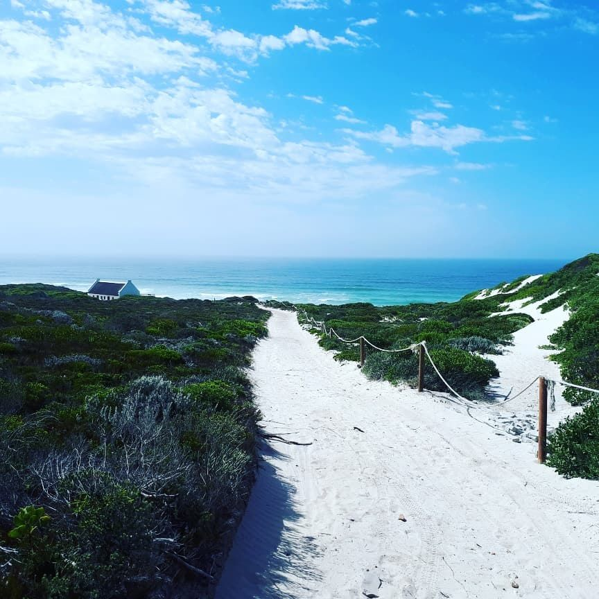 Whiling Away Days At De Hoop photo