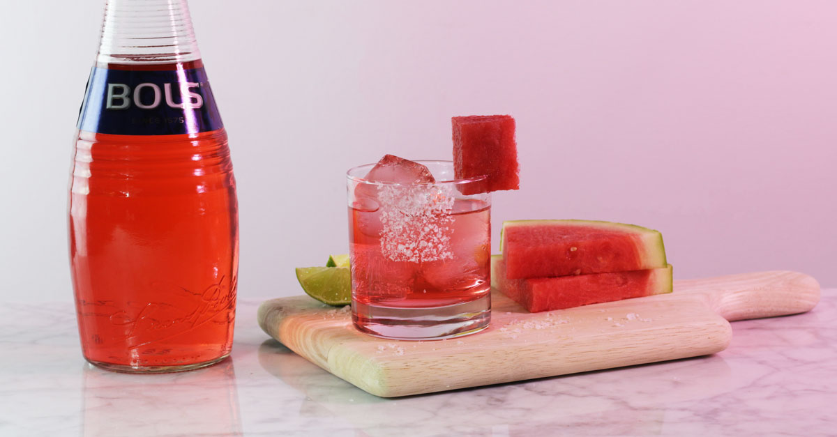 The Bols Watermelon Margarita Recipe photo