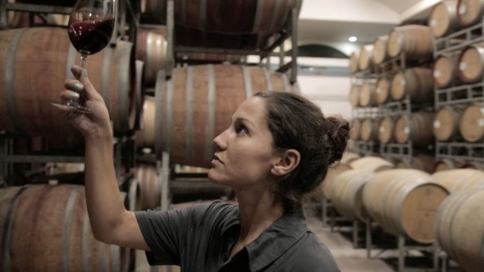 Boschendal Post-harvest: Entering the next stage with excitement photo