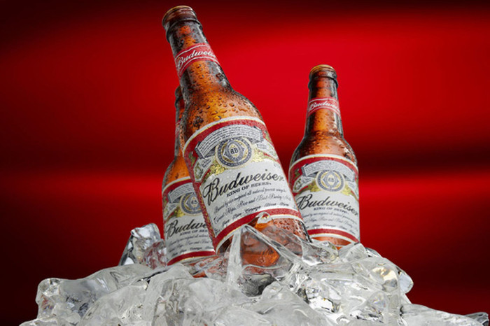 Budweiser Launches In Sa photo
