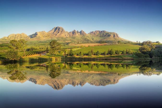 Stellenbosch The Custodian Of World-class Cabernet photo