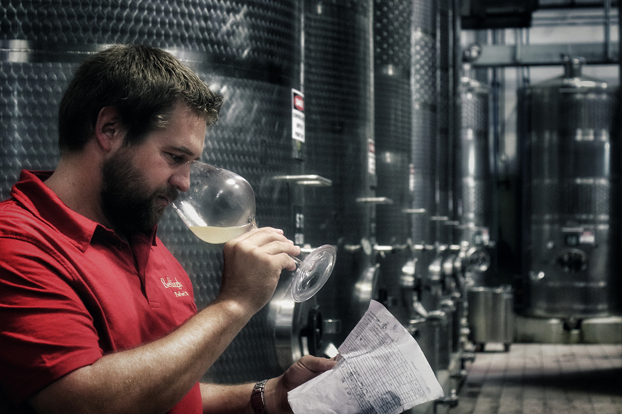 Chief Winemaker at Bellingham reflects on Harvest 2018 photo