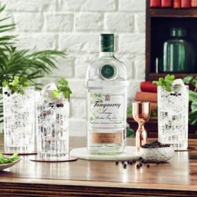 Diageo Creates ?savoury? Tanqueray Lovage photo