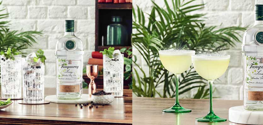 Tanqueray Launches Lovage In An Effort To Show Gin's Savoury Side photo