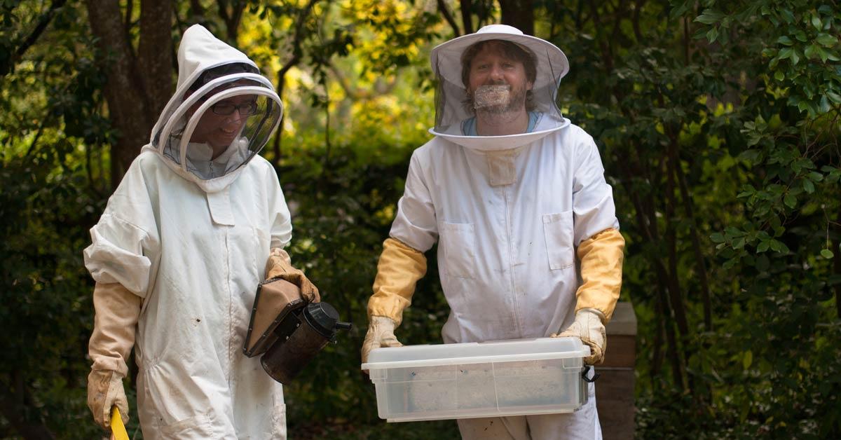 Urban Beekeeping With Gardener's Glory photo
