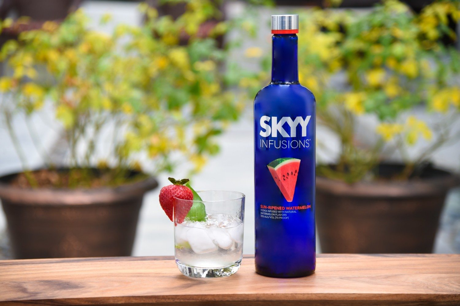 Skyy Watermelon Vodka photo