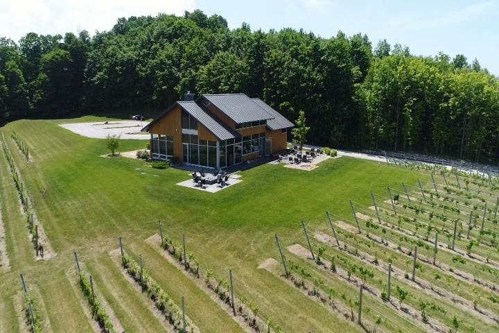 Brewvine: Blustone Vineyards In Lake Leelanau photo