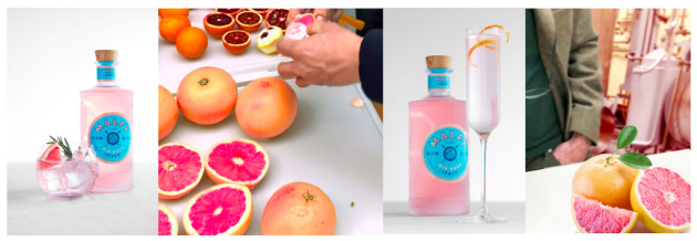 Gin Is In The Pink As Innovation Accelerates photo