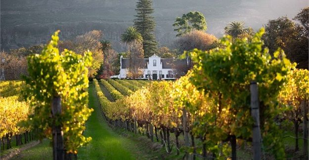 Constantia Valley Celebrates 333 Years photo